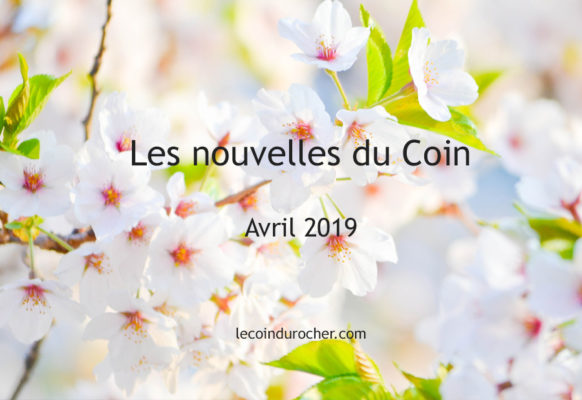 Avril 2019 Newsletter Le Coin restaurant April 2019